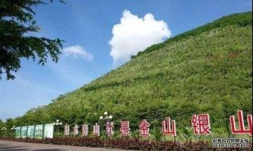 <b>芜湖积极开展绿色矿山创建工作,大力整顿规范</b>